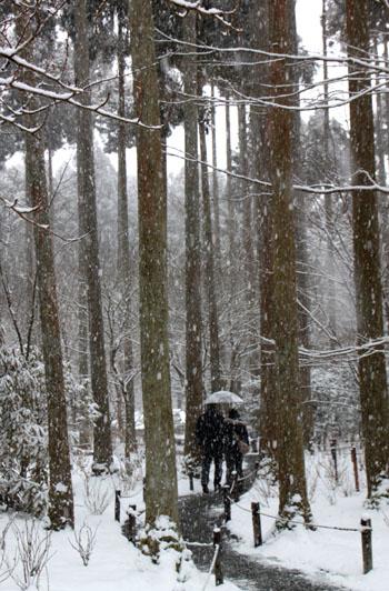 三千院雪景色_e0048413_23111637.jpg