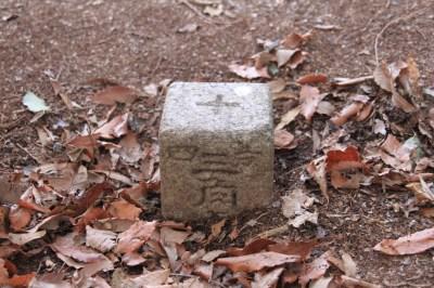 花之木(法花)断層の竜王山を歩く 361.7m  三重県伊賀市_d0055236_13423942.jpg