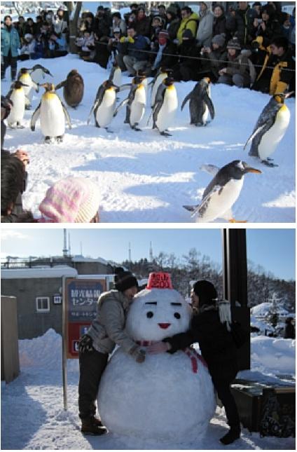 MOTTAINAIツアー/旭山動物園レポート_e0105047_15214320.jpg