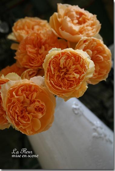rose      マルシェルブ_f0127281_0112761.jpg