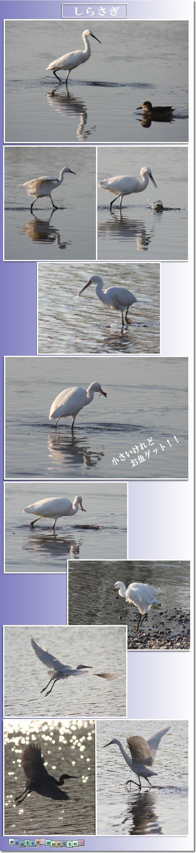 f0164592_072184.jpg