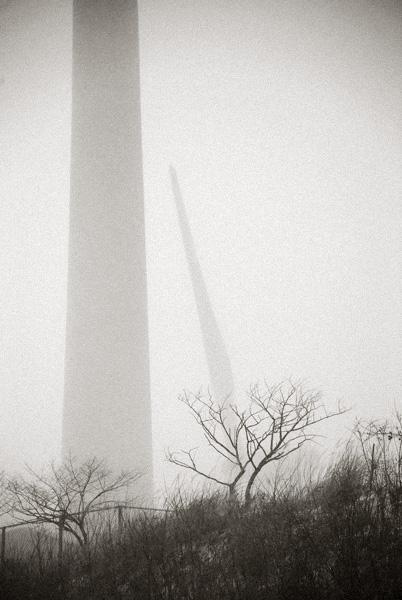 Wind turbines and Trees_d0127209_21311474.jpg