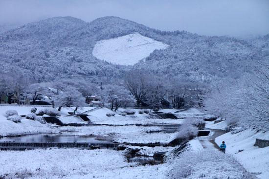 鴨川雪景色_e0048413_2110968.jpg