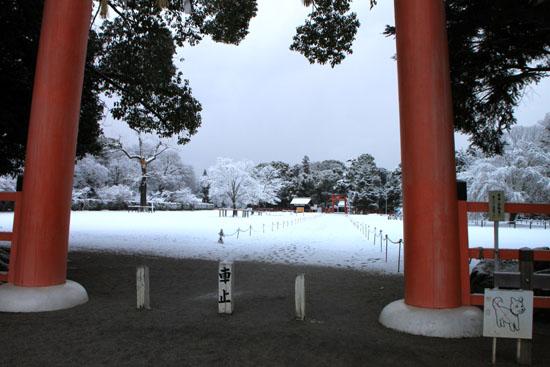 上賀茂神社 雪景色_e0048413_21335413.jpg