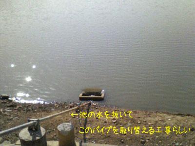 f0008935_16333461.jpg