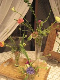 春の花_d0139350_21443076.jpg