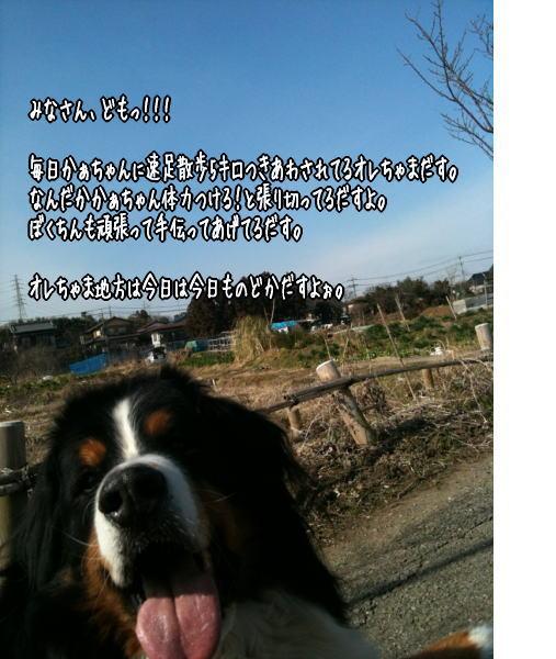 f0187974_1534121.jpg