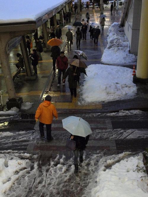 雪のち雨_e0082981_2333878.jpg