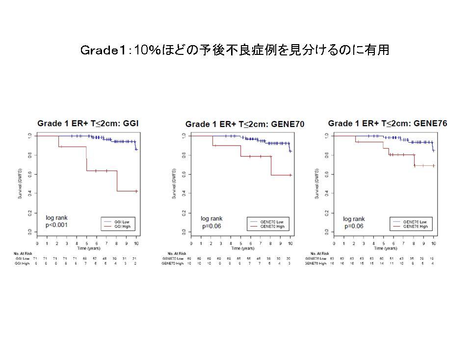 サンアントニオ09 遺伝子発現プロファイル_f0123083_23215684.jpg