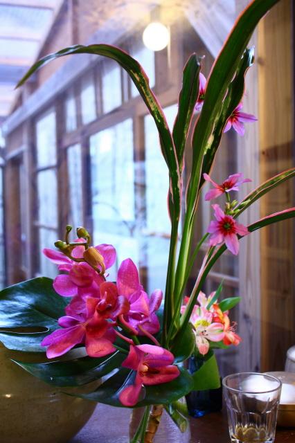「花会話講座」のお知らせ_c0188809_14114941.jpg