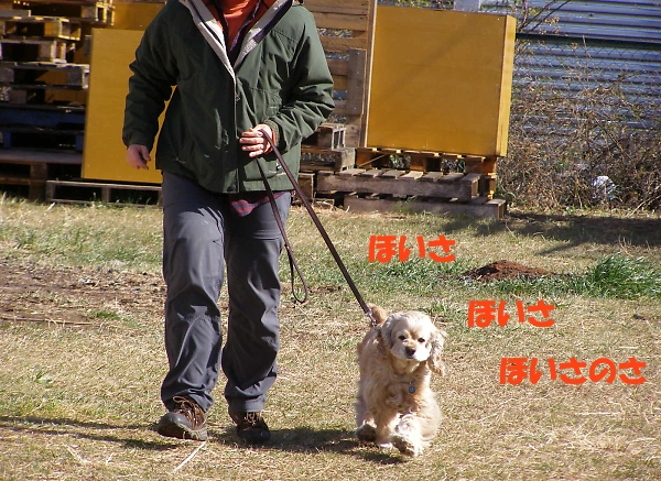 b0067012_0431648.jpg