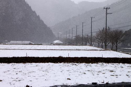 大原の里 雪景色_e0048413_23271584.jpg