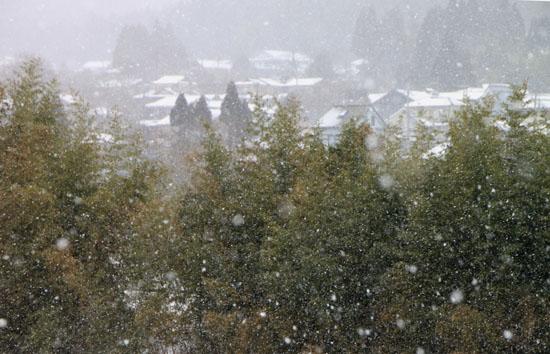 大原の里 雪景色_e0048413_23281140.jpg