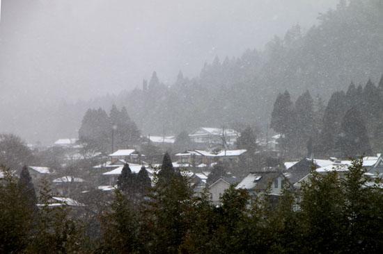 大原の里 雪景色_e0048413_2328181.jpg