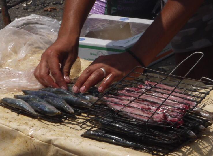 魚と鳥の話 モロッコ_a0042928_0251972.jpg