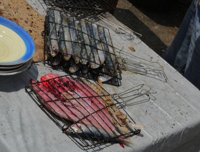 魚と鳥の話 モロッコ_a0042928_0253810.jpg