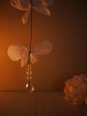 蝶々。_b0125443_207296.jpg