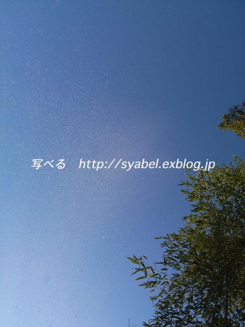 c0153764_18275845.jpg