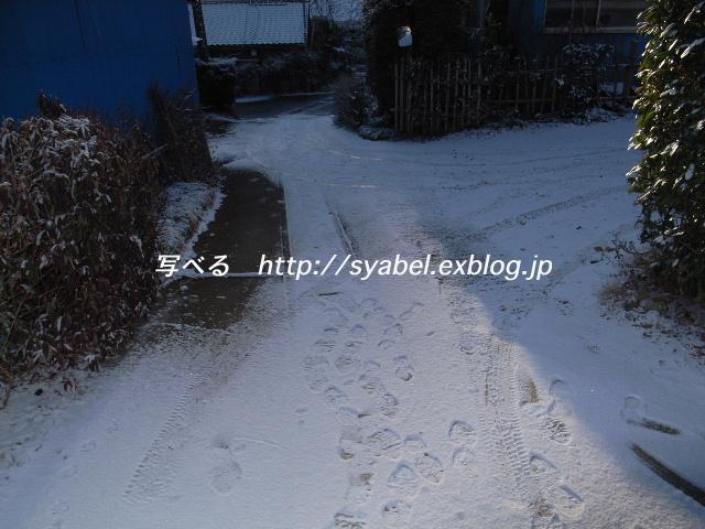 c0153764_18284579.jpg