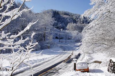 たぶん、この冬いちばんの雪_c0110869_14132565.jpg