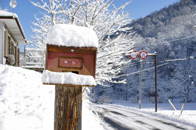 たぶん、この冬いちばんの雪_c0110869_1413596.jpg