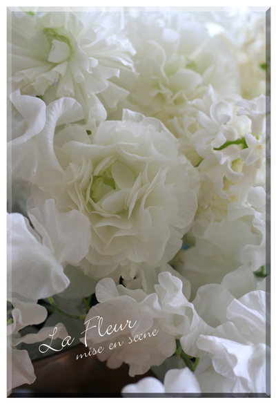 blanche fleurs_f0127281_1701555.jpg