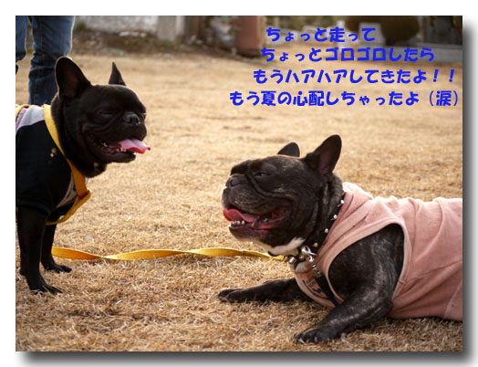 b0134197_2253693.jpg