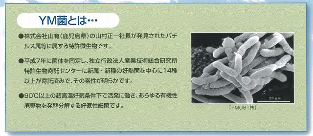 f0141310_23453715.jpg