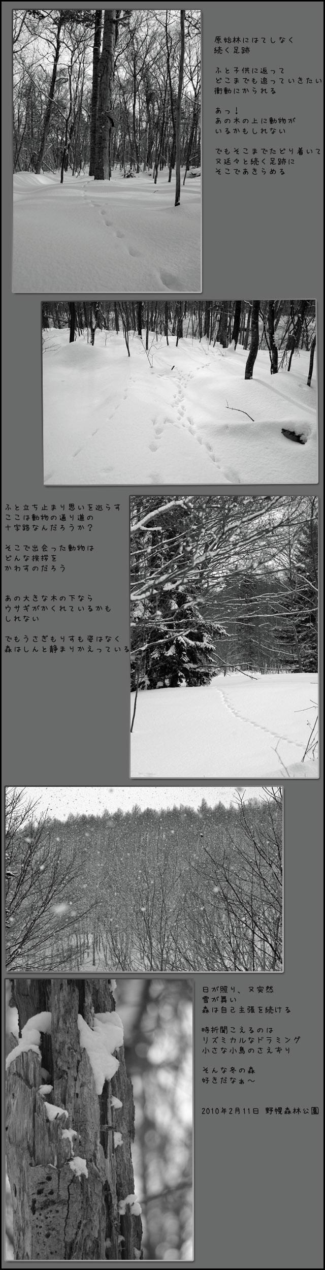 b0019313_174051.jpg
