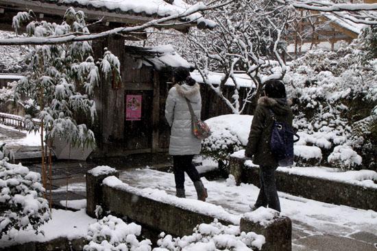宝泉院 雪景色_e0048413_21223878.jpg