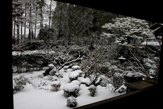 宝泉院 雪景色_e0048413_21235792.jpg