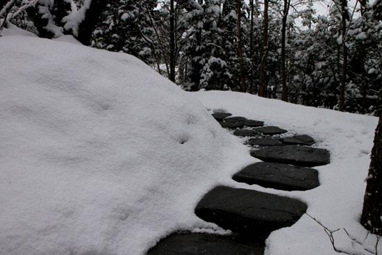 宝泉院 雪景色_e0048413_21241575.jpg