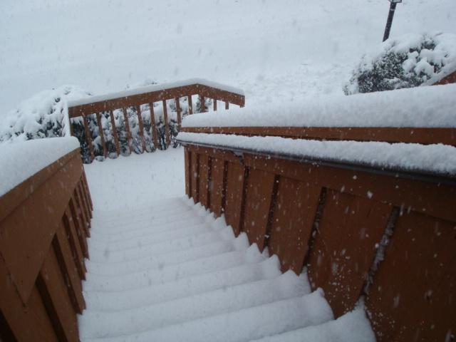 Snow Snow SnowStorm_e0147716_3463284.jpg