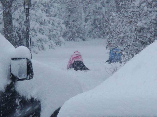 Snow Snow SnowStorm_e0147716_3472141.jpg