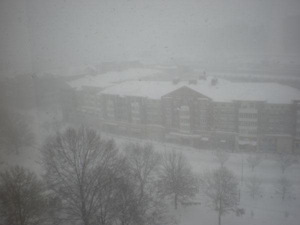 ワシントンは雪、_a0148134_4201059.jpg