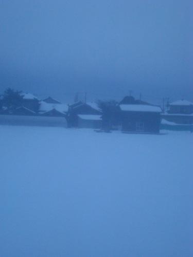 26年ぶりの大雪の新潟でお見送り_c0118352_23144568.jpg