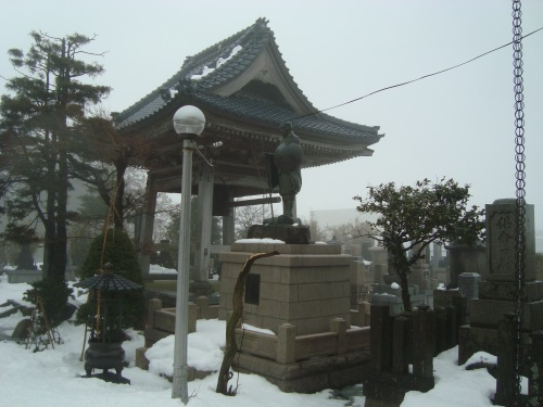 26年ぶりの大雪の新潟でお見送り_c0118352_2341482.jpg