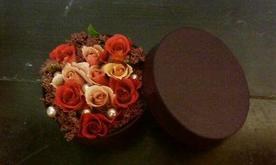 チョコレートカラー_c0137266_23441651.jpg