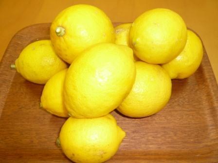 レモン_e0190287_15414760.jpg