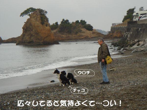 b0101991_2053689.jpg