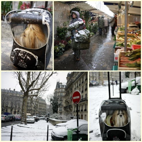 目まぐるしいパリのお天気とブランディのその後_c0090198_523942.jpg