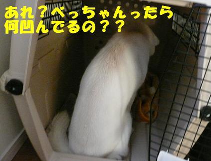f0121712_9241950.jpg