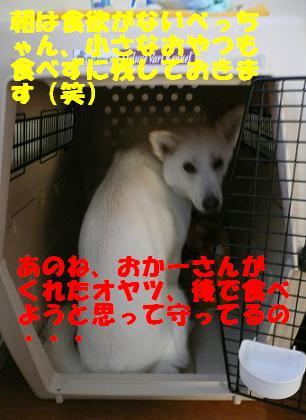 f0121712_9242734.jpg
