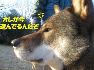 f0143123_20104832.jpg