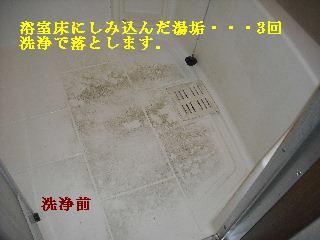賃貸物件ハウスクリーニング他_f0031037_2001022.jpg