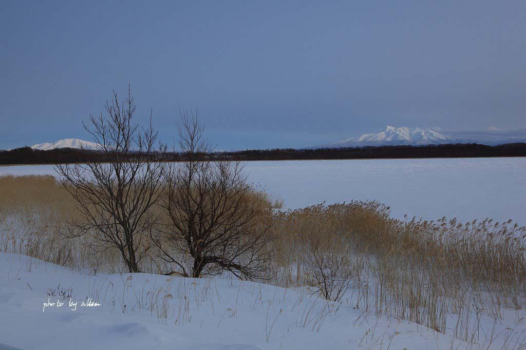 流氷あんど雪の波紋より~_a0039860_19525446.jpg
