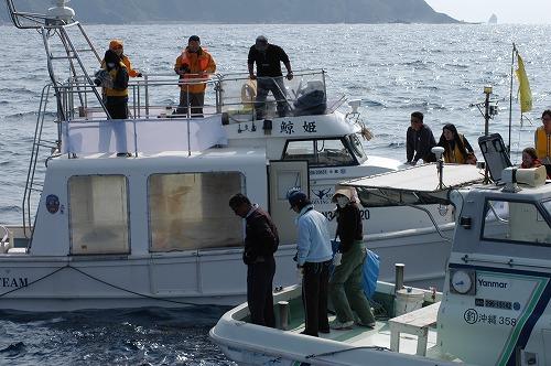座間味のクジラ&水中の世界⑧_c0180460_04571.jpg