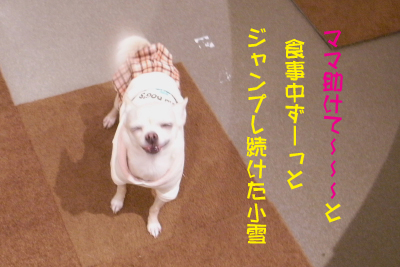 c0173670_1761821.jpg