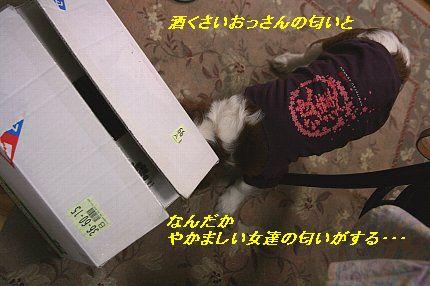 b0021297_2121073.jpg