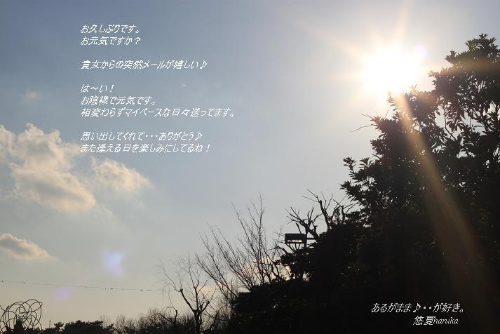 a0141400_0373538.jpg